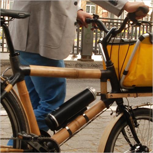 Cycad Bike